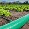 A irrigação agrícola Layflat de PVC flexível de pingos para sistema de irrigação agrícola