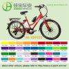 고전적인 36V/250W Motor & 10ah Lithium Battery E Bike (JB-TDF03Z)
