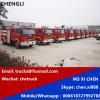 Dongfeng Dlk 4X2 LHD 물 탱크 화재 싸움 트럭