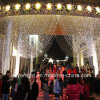 Décoration de Noël de lumière de rideau en mariage DEL du Mexique