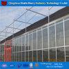 Serre van het Glas van de landbouw de multi-Spanwijdte Aangemaakte met Hydrocultuur Stsyem