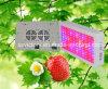 O diodo emissor de luz cheio agricultural do espetro 300W de Vegatables e de Friuts cresce a luz