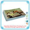 Luxury Catalog Paper Catalog Company Catalog Printing Matt Lamination