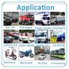 Inseguitore di GPS dell'automobile del veicolo di inseguimento di Shenzhen Kingjage GPS
