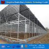 Serre chaude en verre agricole de Multi-Envergure professionnelle de la Chine
