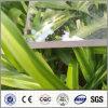 Van het polycarbonaat Stevig PC- Blad voor de Luifel van de Serre
