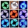 Des Vde-UL-Es PSE LED neuer Entwurf 5050 5630 3014 Streifen-Licht-SMD 3528