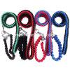 De Nylon Leibanden van uitstekende kwaliteit, de Halsband en de Leiband van de Hond