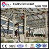Estrutura de aço de construção do estádio prefabricados Futsal, Prédio de Estrutura de aço de construção