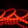 Ce & RoHS Aprovado Natal LED Strip Outdoor Decoração