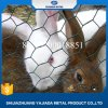 Malla de alambre de hierro recubierto de PVC para jaula conejo