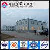 Fournisseur professionnel d'atelier de structure métallique (SSW-14010)