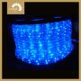 La luz de la cuerda de LED de iluminación Vacaion