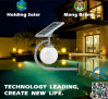 Luz solar patenteada nova do jardim do diodo emissor de luz do projeto com controle inteligente