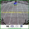 Slope Protection/Rock Fall Protection Wire Meshのための斜面Protection Net/Wire Mesh