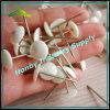 백색 색깔 둥근 맨 위 강철 정강이 장식적인 양탄자 압정 못 Pin (P160706A)