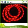 flexión de neón suave colorida de 12V /24vrgb LED con efecto de la corriente