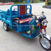 Tricycle elettrico di Cargo Tricycles