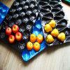 배를 위한 안전한 최고 질 PP 플라스틱 과일 쟁반