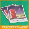Échantillons de papier de brochures de publicité (BLF-F094)
