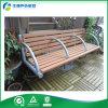 Muebles al aire libre exteriores usados alta calidad del patio (FY-005X)