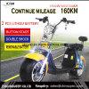 Siège double batterie au lithium de 2 roues de graisse de la mobilité électrique Harley scooter