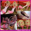 En 2015 Llegó la nueva moda sandalias con tacones altos y plana para las mujeres en Alta Calidad (C-183)