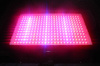 Spectrabox 600W LED Grow Light for Hydroponics The Best Grow Lights From Seed to Flower