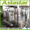 Migliore impianto di per il trattamento dell'acqua minerale piccolo automatico di vendita