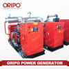 10 kVA 디젤 엔진 발전기 옥외 발전기