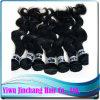 100 브라질 Virgin 머리 씨실 (FL253JC10)