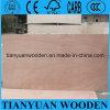 madera contrachapada de la suposición de la chapa de madera de 2.9m m para la cara de los muebles