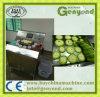 Bittere Melone-Schneidemaschine für Verkauf in China