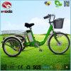 Motocicleta elétrica nova do triciclo do triciclo para o passenge e a carga