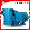 Fenlin Handelsplastikpumpen-Swimmingpool-Wasser-Pumpe