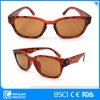 Estilo clássico Frame Leopard Zebra Plastic Óculos de sol para mulheres