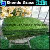 Grama do jardim 20mm com aparência natural 160stitch/S da grama