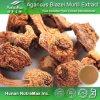 Выдержка Blazei Murill Agaricus высокого качества (полисахарид 10%~50%)