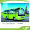 Omnibus largo de lujo de Shuttel del vehículo de pasajeros de la ruta