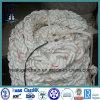 Stränge der Marine-8, die Seil verankern