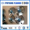 El acero inoxidable del ANSI forjó el borde de la soldadura del socket (PY0079)