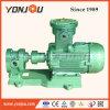 Pompe de pétrole à haute pression de vitesse (2CY)
