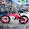 250W Pneu Gordura Praia Dobrável motociclo para Girl