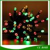 100LED Tube Shape Solar variopinto String Light per il giardino Decorate