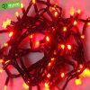 陽気なストリングはLEDのクリスマスの照明をつける