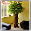 Decorationのための生きているFicus Tree Artificial Banyan Tree Dry Tree