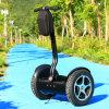 De Zelf In evenwicht brengende Slimme Elektrische Autoped van twee Wiel met Autoped van de Staaf van het Handvat de Zelf In evenwicht brengende