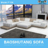 Modern Leather Sofa F104