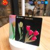 Smart card plástico da venda de Prefessional para o transporte