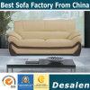 Italienisches Entwurfs-echtes Leder-modernes Büro-Sofa (A006)